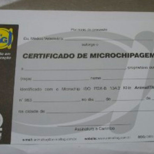 microchipagem-1