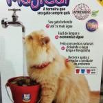 bebedouro gato3